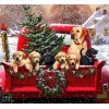 Winter Christmas with Puppies