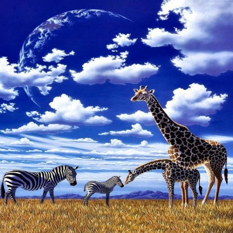 Under The African Sky