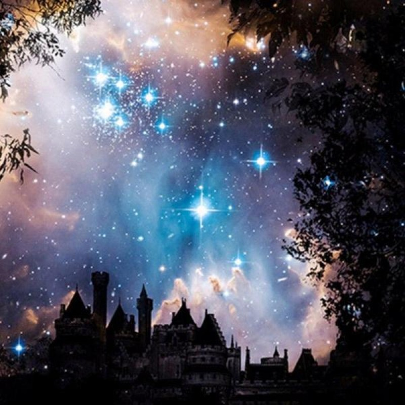 Stars Above The Cast...