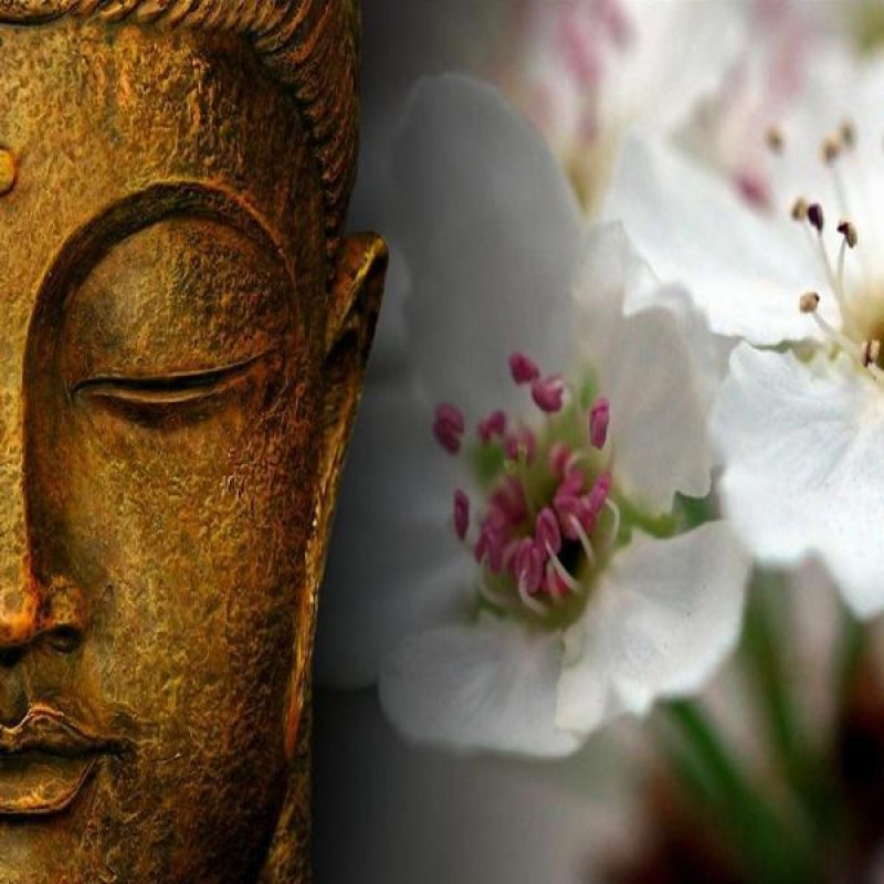 Buddha And Flowers