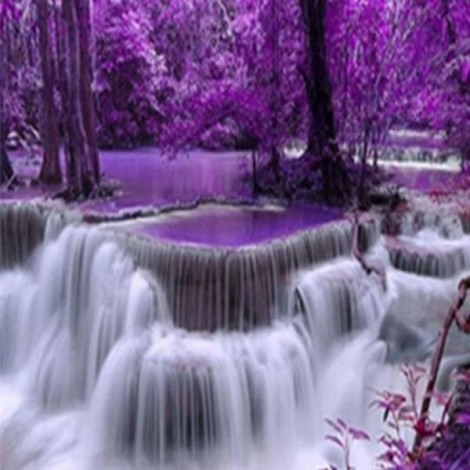 Magical Forest Falls
