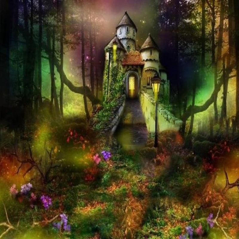 Magical Forest House