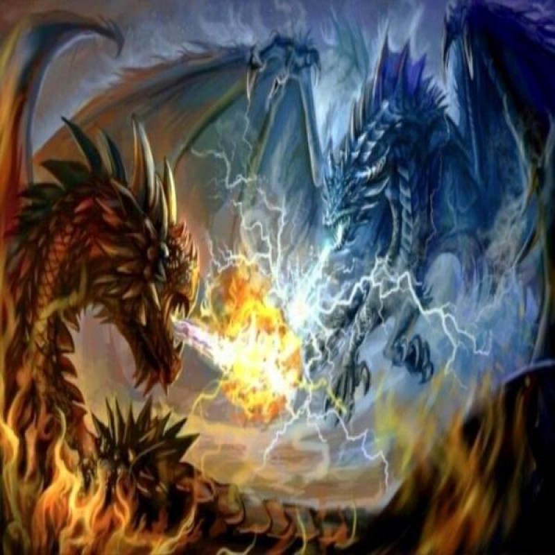 Dragon Fight