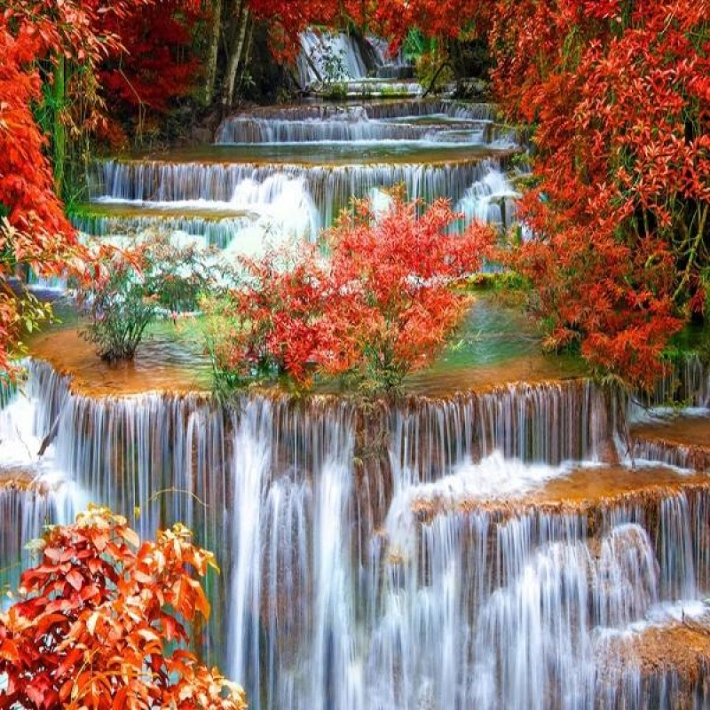 Red Forest Waterfall