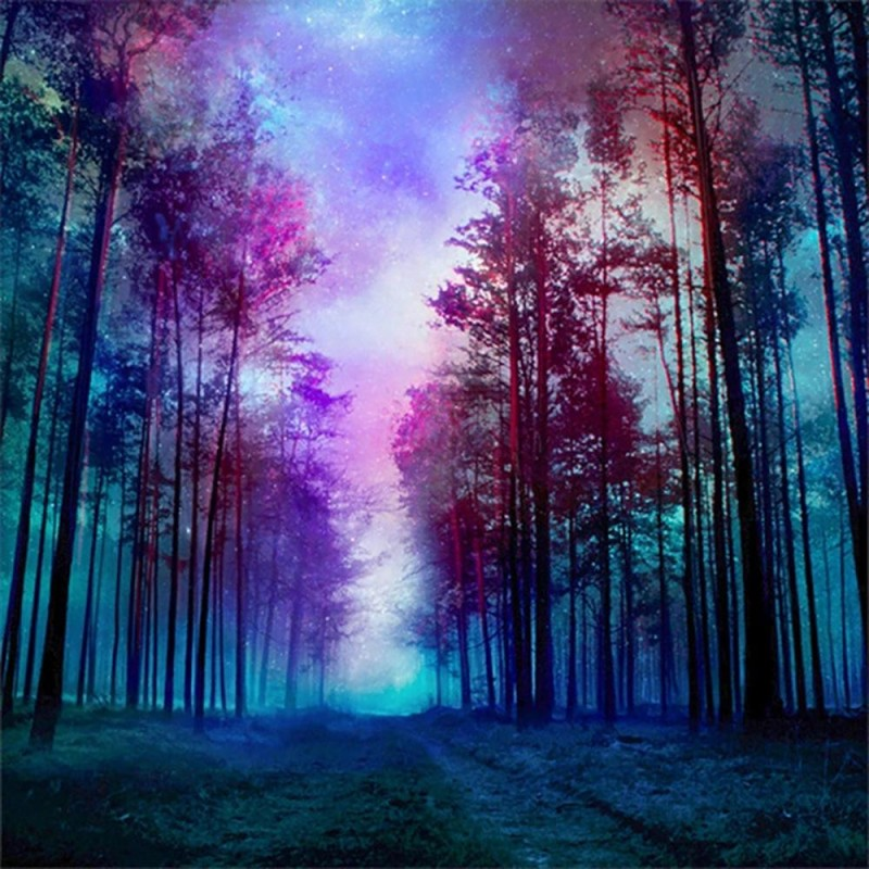 Purple Sky Forest