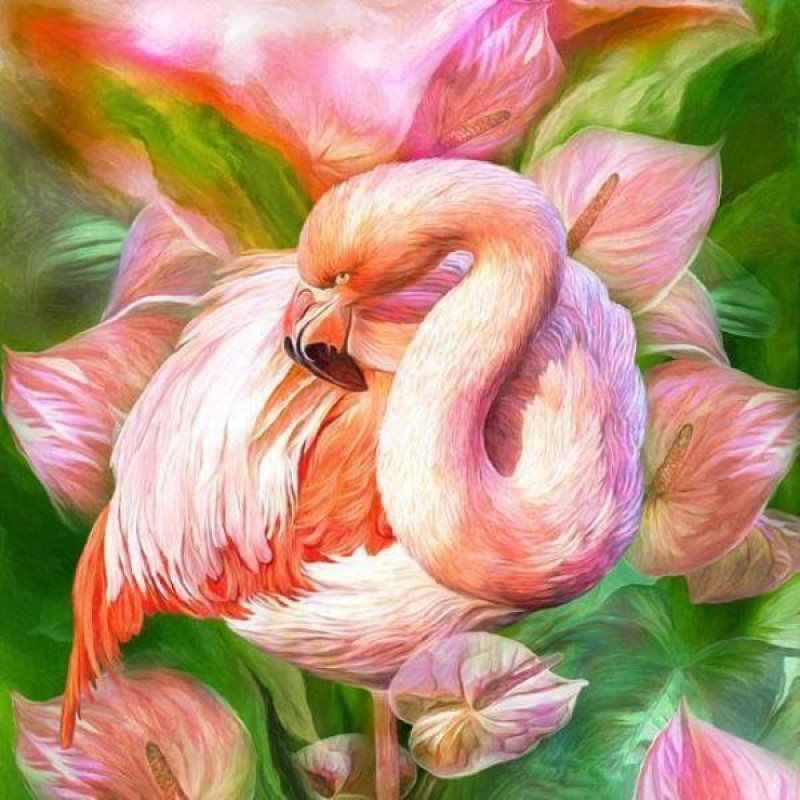 Flower Flamingo