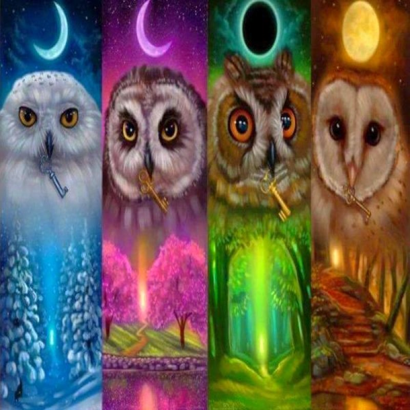 Four Seasons Owls