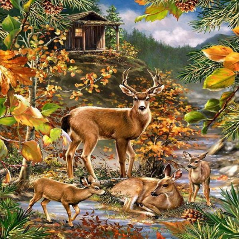 Fall Forest Deers