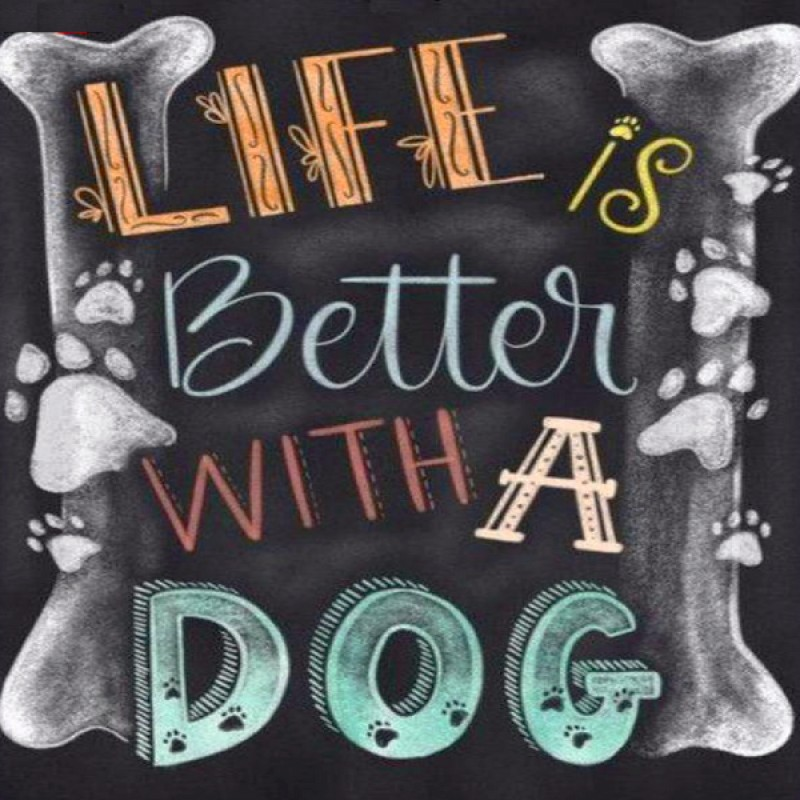 Life Is Better With ...