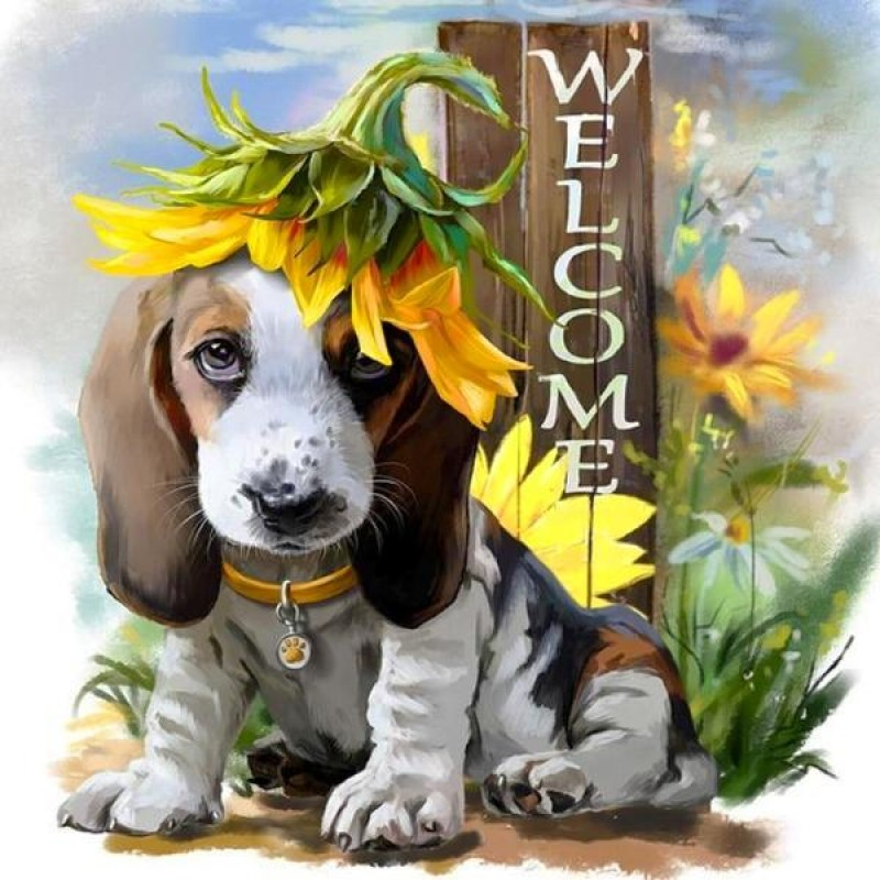Puppy Welcome