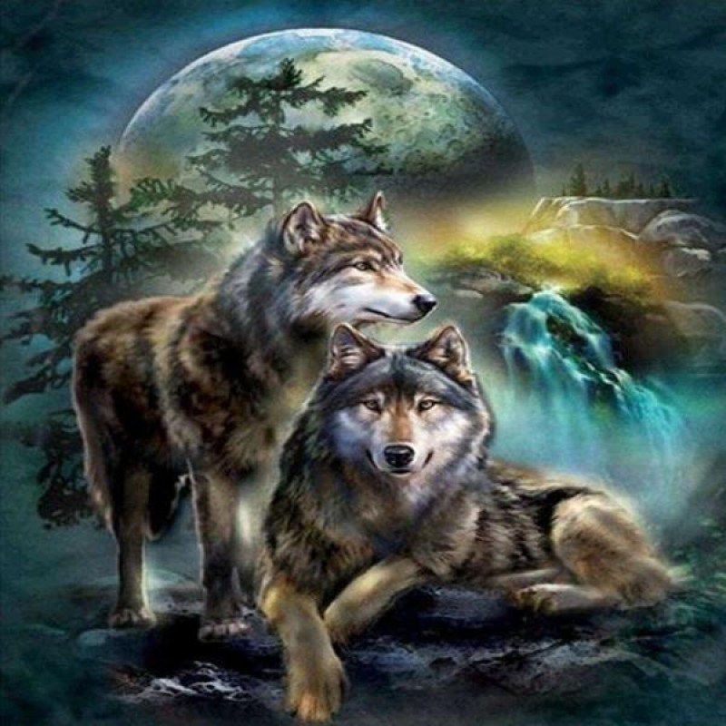 Wilderness Wolves