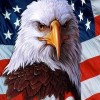 Dignity Of American Eagle