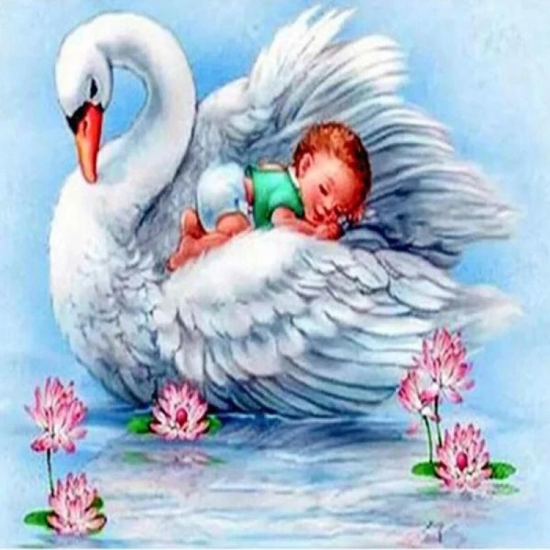 Baby Sailing On Swan