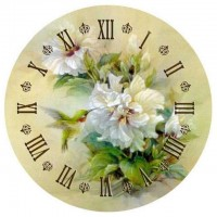 Hummingbird Clock Face